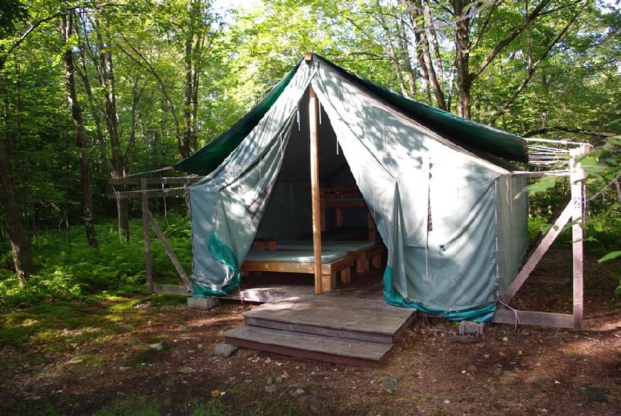 874_maples_left_tent_close_2