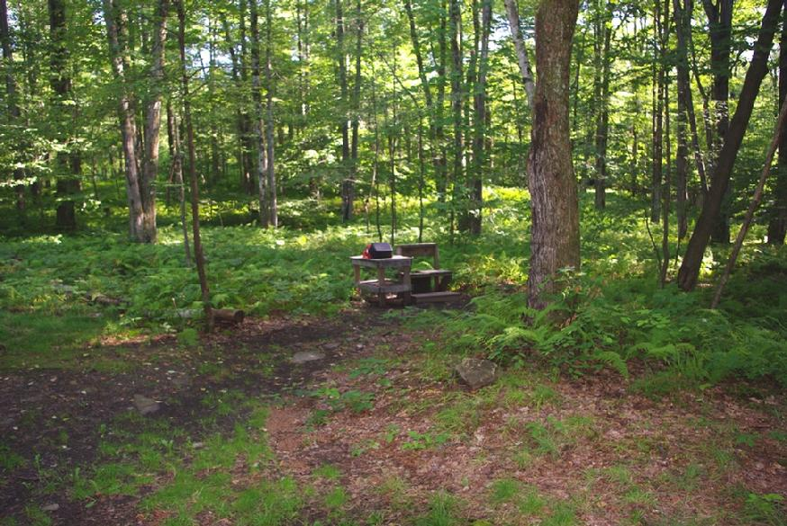 874_maples_left_wash_stand